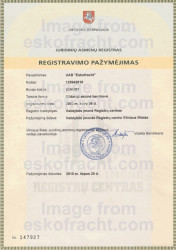 Certifcate of State Registration of Legal Entity (2002)